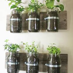 Small Space Gardening Ideas 2 3