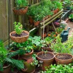20 Garden Ideas for Small Spaces - Happiness is Homemade