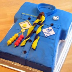 2 Cub Scout Uniform Cake