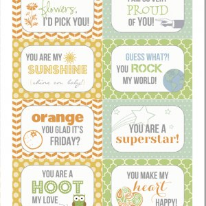 Printable Lunch Box Notes - Picklebums · Lunchie ...  sc 1 st  Happiness is Homemade & Back-to-School Lunch Box Jokes u0026 Notes - Happiness is Homemade Aboutintivar.Com