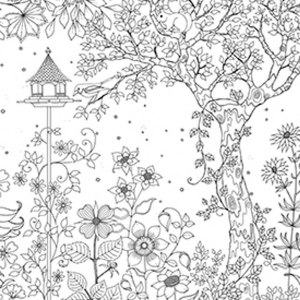 Secret Garden: An Inky Treasure Hunt and Coloring Book (For Adults ... | 300x300