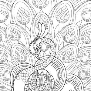 Adult Free Coloring Pages Coloring Pages To Print 101 Free Pages